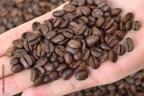 Agriculture, close up of roasted coffee beans in human hand