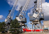 Horizontal color image of 3 old cranes in docks.