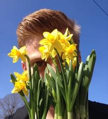 Blicken durch Blume
