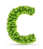 Letter  C,  vector alphabet of green leaves