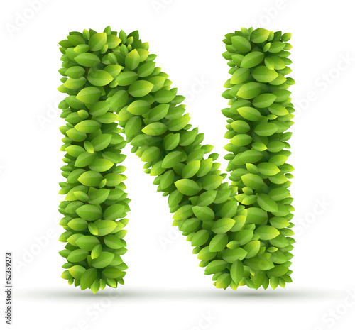 Letter N,  vector alphabet of green leaves