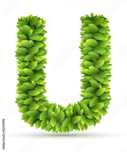 Letter U,  vector alphabet of green leaves