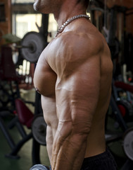 Man working out at the gym, side view of chest, pecs and arm