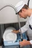 Kitchen porter cleaning plates in sink
