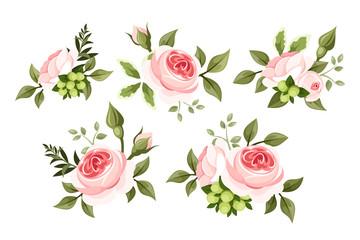 Set of pink roses. Vector illustration.