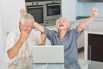 Excited senior couple using the laptop at the table