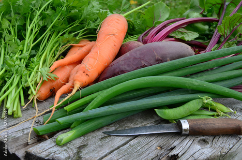 свежий урожай