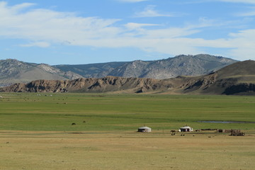 Mongolische Steppe des Khustain Nationalparks