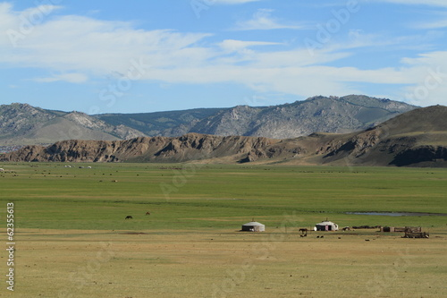 canvas print picture Mongolische Steppe des Khustain Nationalparks