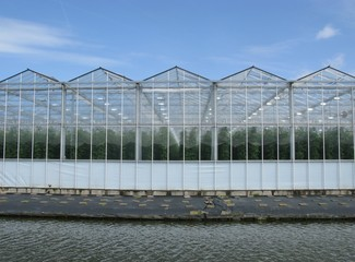 Glasshouses of a nursery in the Netherlands