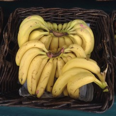 bananas on the chines market