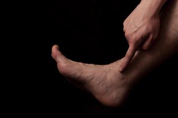 Human anatomy series: Malleolus  fibularis