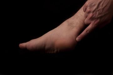 Human anatomy series: tendo calcaneus