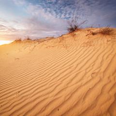 Beautiful landscape in desert.