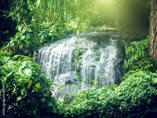 waterfall in jungles of Seychelles, Mahe island
