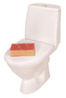 White toilet bowl and book (Clipping path)