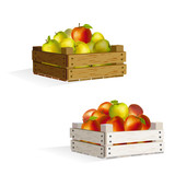 two boxes of apples