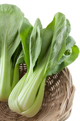 Chinese Bok Choy in Basket