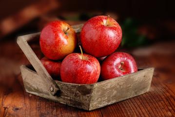 mele rosse biologiche nella cassetta di legno