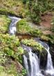 mountain streams, landscape Jeseniky, Czech Republic