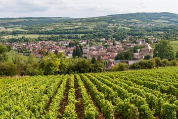 Vignoble et village de Santenay en Bourgogne