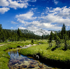 Meandering Creek in the Sierra Nevadas