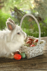 Bunny near white basket with Easter eggs