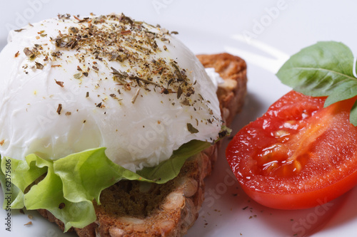 sandwich with poached egg macro horizontal