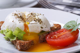 sandwich with salad, open poached egg on a white plate
