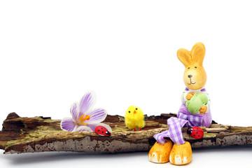 Osterhase, Küken, Krokus & Marienkäfer sitzen auf Baumrinde
