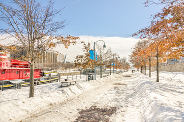 Public Footpath on a Winter Day in Montreal