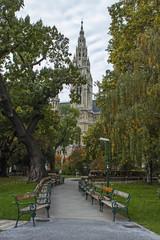 Vienna , Austria. Urban public park in autumn
