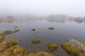 Early spring foggy pond on Swedish coast