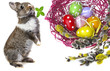 easter eggs in a nest and easter rabbit