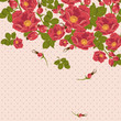 Floral ornament with wild rose on a polka dot