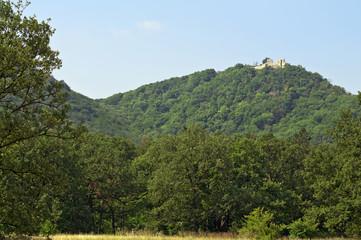 Ruins of Rezi castle