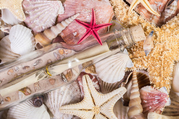 Sea shell texture with message in a bottle.