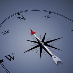 Compass of success