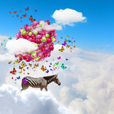 Flying zebra