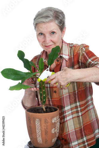 Elderly cheerful woman sprinkles flower