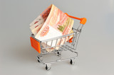 Money in shopping cart on gray background