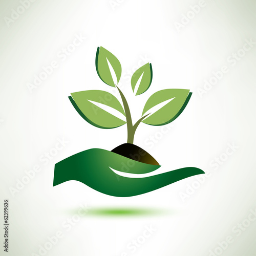 palm and plant symbol, ecology concept
