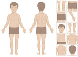 human or boy body parts, vector cartoon illustration for kids