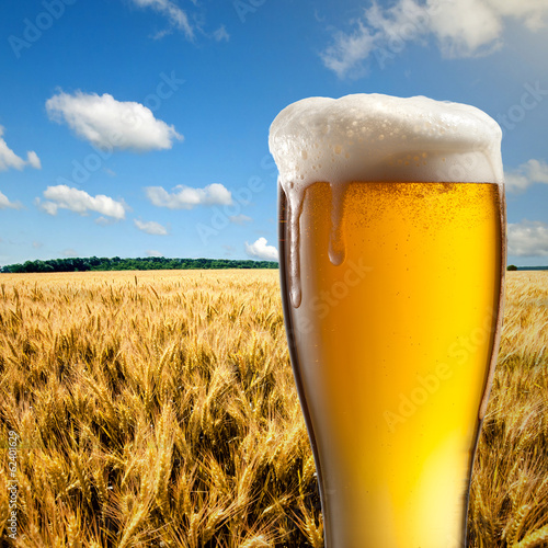 Glass of beer against wheat field and blue sky