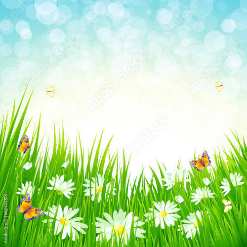 Spring grass vector background
