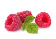 Raspberry fruit