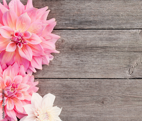 Foto op Canvas Hout dahlia on wooden background