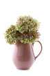 old pink hot chocolate jug filled with hydrangea flowers