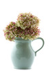 vintage hot chocolate jug with dried hydrangea flowers