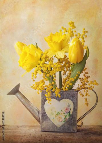Fotobehang Narcis Spring flowers